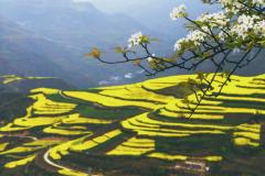 青春扶贫 能量助农——甘肃省西和县